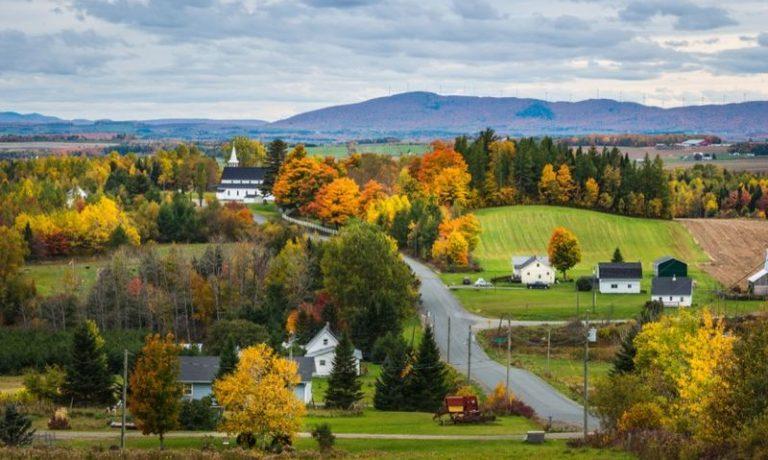 بهترین برنامه های مهاجرت نیوبرانزویک کانادا
