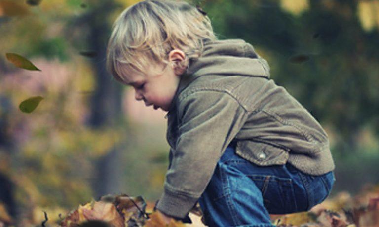قانون خانواده در کانادا Family Law in Canada