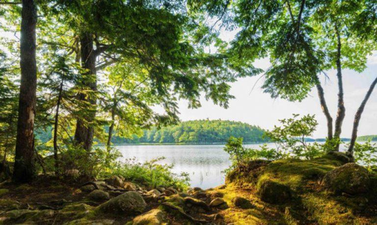 مهاجرت به کانادا و ۱۰ دلیل برای بازدید از هالیفاکس کانادا