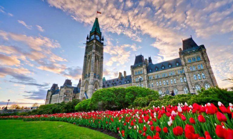 تحصیل و آموزش پرورش در ویکتوریا کانادا