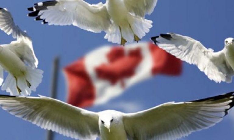 شهروندی کانادایی CANADIAN CITIZENSHIP